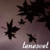 tenesvet: листья