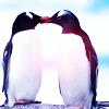 EJ // Salma: Penguin Love