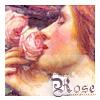 Kate: waterhouse rose