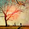 jessie_lehane: tree