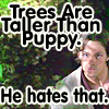 Mel: trees are taller than Puppy