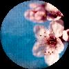 mallentariel userpic