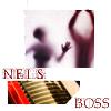 neis_boss