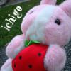 Hibi//Kuri