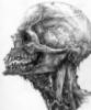 fracturedinside userpic