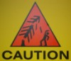 caution: laser trees