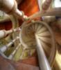 innae24 userpic
