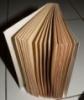 bookchallenge2