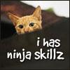 ninja skillz
