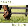 Barbaro icon- peace