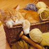 CatWool