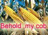 cornlord userpic