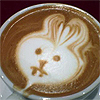 coffeebunny