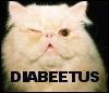 rose: diabeetus