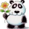 panda_fun