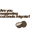 coconuts migrate?