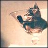 nwcmwfan15 userpic