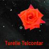 turelietelconta userpic