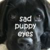 sad puppy eyes