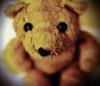 aloysius_bear