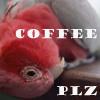 coffee plz