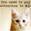 Tabby: pay attention