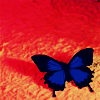 littlemoose userpic