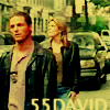 55-David