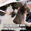 Intelligentrix: Bat Country