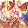 chsngbuttrflies userpic