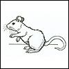 mouse_maven