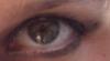 Scrat: occhio