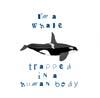 im a whale