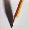 pencil, voluptuaries