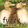 Fuzzy Duckies