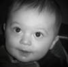 llwinks userpic