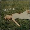 Erin M. Justice: [ art: photo ]  free bird
