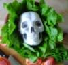 lettuceforlife