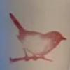 Naranja: bird