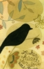 pocket_bird userpic