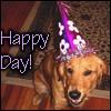 Annie: Pup -  Birthday