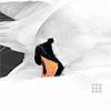dark_cygnet: Graceful Swan