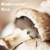 The Magical Mushroom Maid