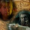 spall, pettigrew