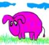 pinki_donkey userpic