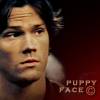 Puppy Face!