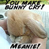 the bunny of lies