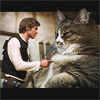 Jabba-the-Cat