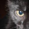 Zaboo Evil Eye