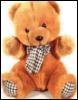 teddyforone userpic